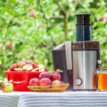 Bella Juice Extractor Review
