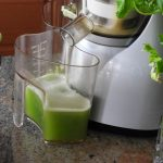 The Best Juicers for Celery